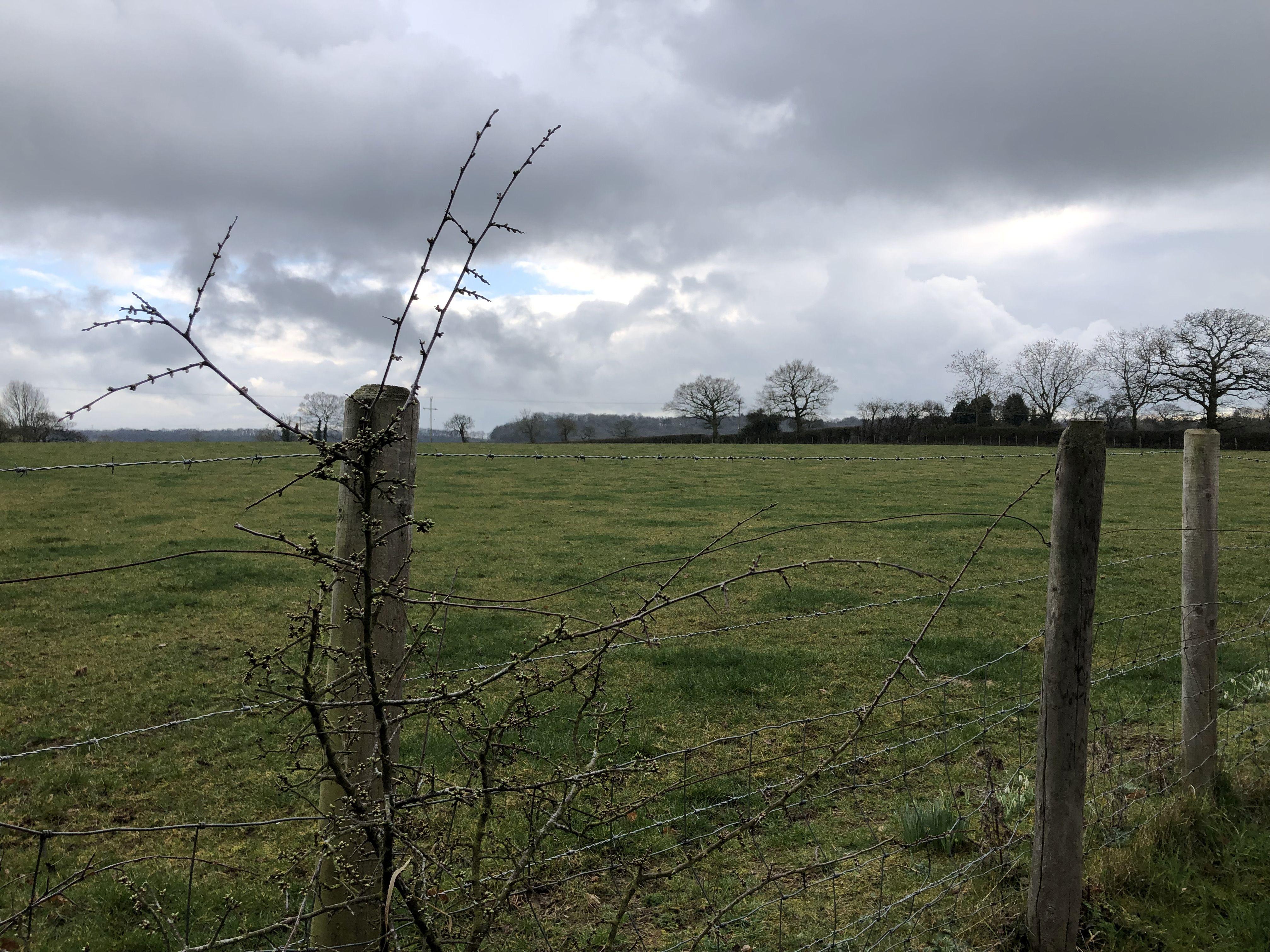 Rural Worcestershire