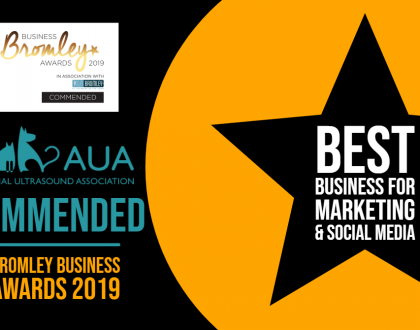 Commended Best Business for Marketing and Social Media